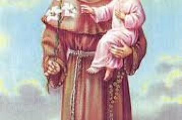 Sant'Antonio da Padova: miracolosa guarigione di una bimba?