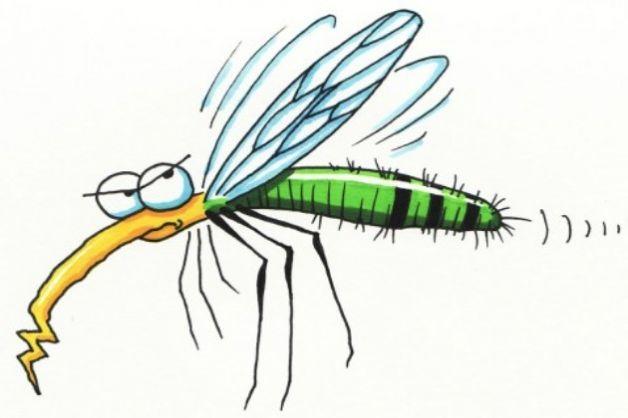 proteggere-i-bambini-dalle-zanzare