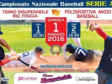 BASEBALL E SOFTBALL CLUB FOGGIA CONTRO ANZIO