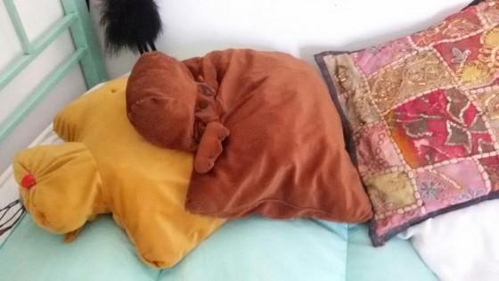 Punture sul corpo in viaggio ecco le cause mediterranews - Cimici da letto cause ...