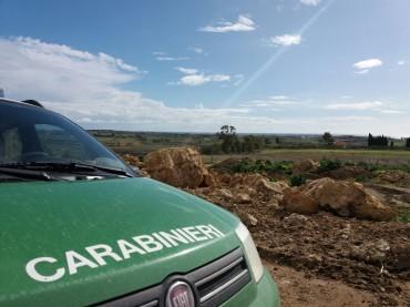 Cotronei: i Carabinieri Forestali al lavoro sui terreni demaniali
