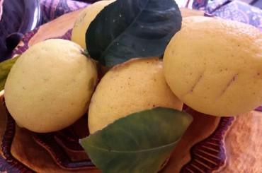 Dolci di carnevale, le frittelle al limone