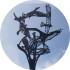 Morte dell'Artista Internazionale Robert Cook Il bronzo del maestro d'arte Robert Cook è ancora fluido