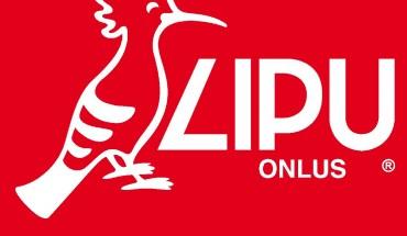 lipu_logo