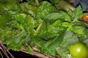 Le verdure a foglia verde sono amiche del cuore
