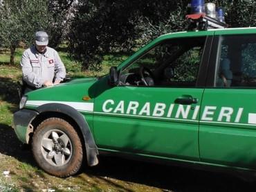 legittimazione terreni: sequestrato terreno a Isola Capo Rizzuto