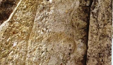 muro lungobormida (1)