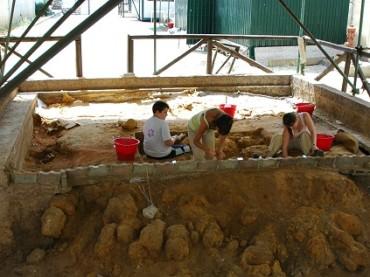 Al museo della Tonnara l'Oreopiteco di Fiumesanto