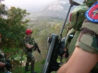 Sul Gargano Cacciatori di Calabria, poco conosciuti, molto efficaci [VIDEO]