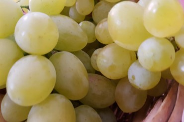 L'uva in barattoli da gustare durante la stagione fredda