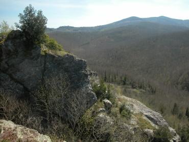 L'Uomo di Neanderthal viveva a Roccastrada, nella zona de La Pietra