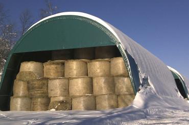 Tunnel agricoli prezzi e caratteristiche importanti