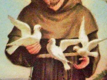 Il sacco di san Francesco La leggenda del convento di Folloni