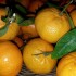 Mandarini, frutti ottimi e profumati d'inverno
