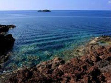 Perché scegliere Ustica per il diving