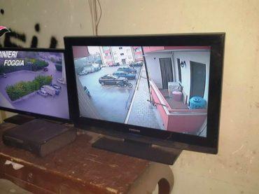 Cerignola, quartiere Torricelli, dai Carabinieri sgominata centrale della droga