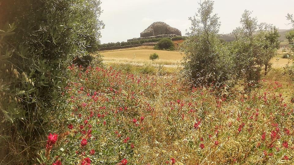 Barumini: Hotel Su Nuraxi per una Sardegna tutta da vivere