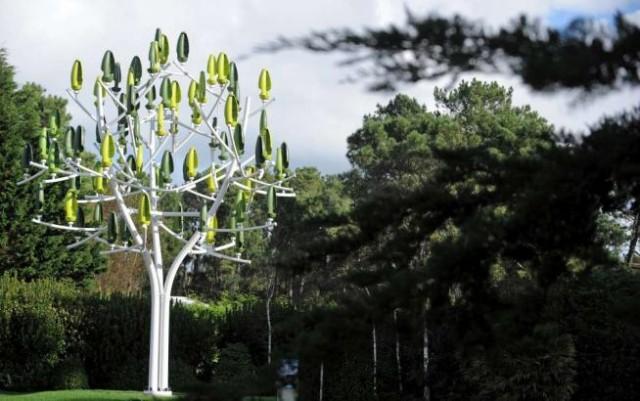 L'albero del vento foto AFP