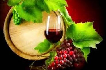 I vini italiani crescono online: ecco tutti i numeri dell'e-commerce dell'etichetta