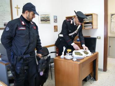 Crotone :Attività antidroga dei Carabinieri 8 arresti negli ultimi giorni
