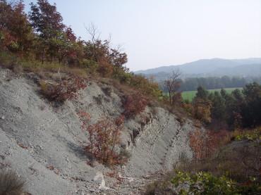Un incendio dei boschi da spegnere con i canadair…Bruno Chiarlone Debenedetti