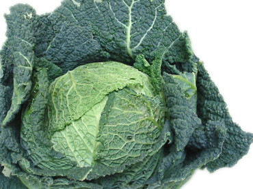 Frutta e verdura di stagione: la verza depura le vie respiratorie ed è un toccasana per la pelle