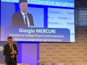 Giorgio Mercuri rieletto presidente Fedagri
