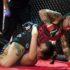 Ritorna la gabbia del Fight club championship
