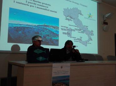 Ampliamento area marina protetta, Stintino avvia un percorso di confronto