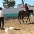 Ippoterapia e integrazione sportiva: la Sardegna in prima linea per la sclerosi multipla